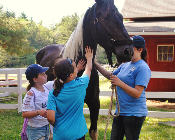 RIding Camp for Girls